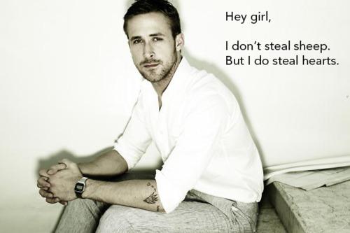 Hey Girl Steal Sheep