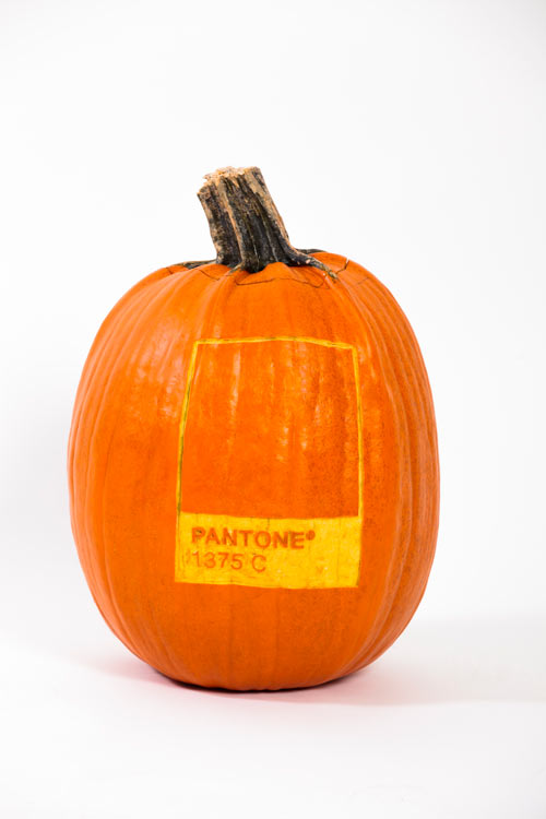 Pixel and Pilcrow - Graphic Design Halloween Costumes - Pantone Pumpkin